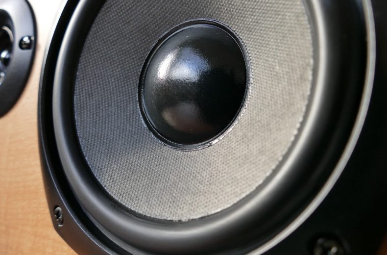 Sony close up speaker cone